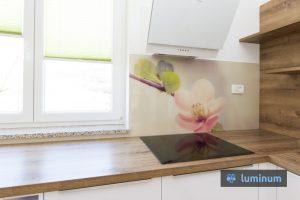 Češnjev svet na kuhinjskem steklu